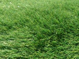 Искусственная трава 30мм